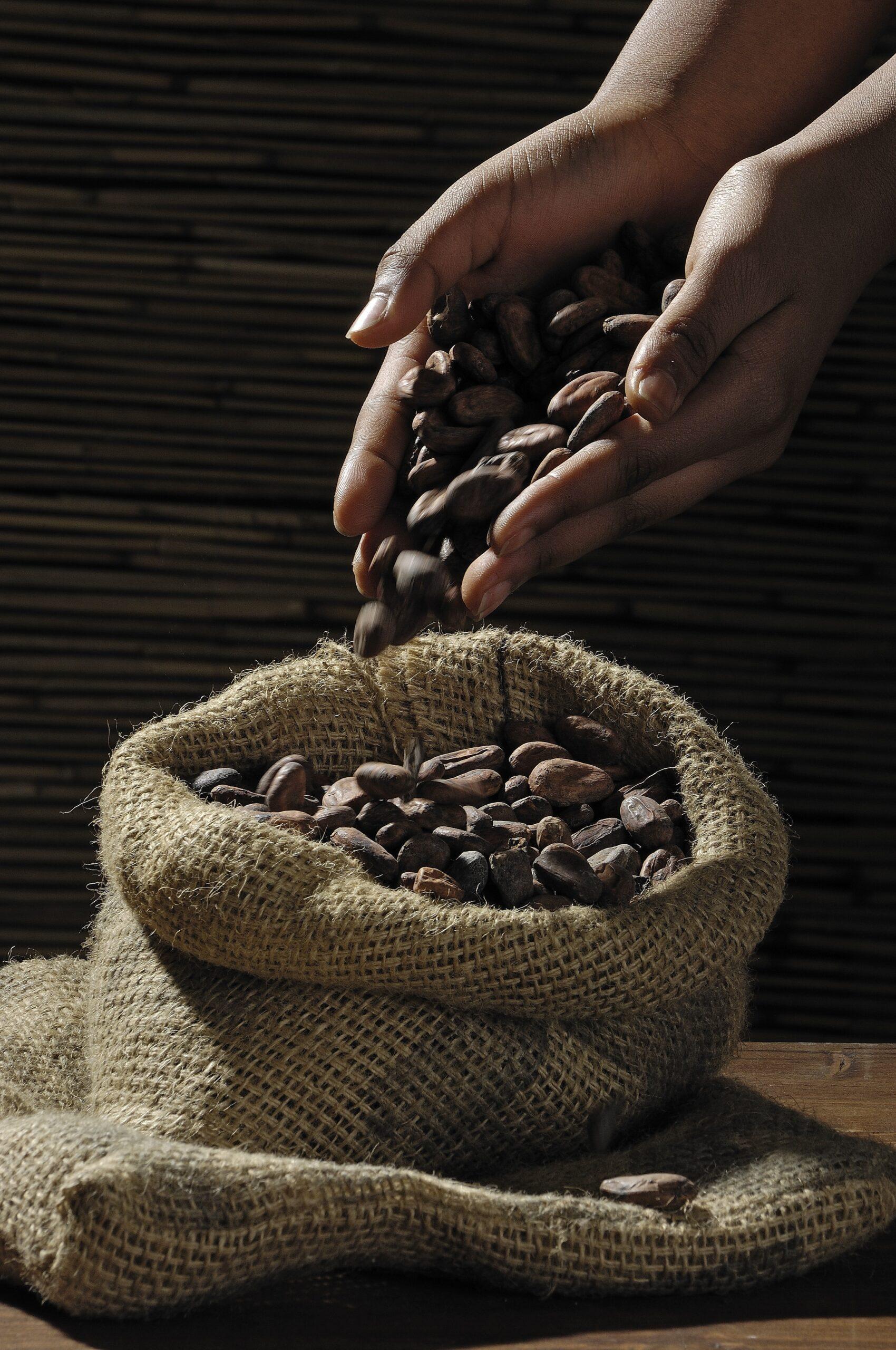 Baklahu-kávé, ahol szeretnéd